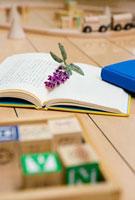 リビングの本と花と玩具
