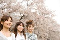 桜と女性 11000044744  写真素材・ストックフォト・画像・イラスト素材 アマナイメージズ