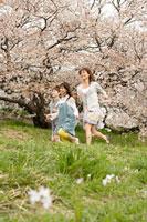 桜と女性 11000044745  写真素材・ストックフォト・画像・イラスト素材 アマナイメージズ