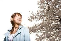 桜と女性 11000044753  写真素材・ストックフォト・画像・イラスト素材 アマナイメージズ