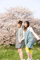 桜と女性 11000044840  写真素材・ストックフォト・画像・イラスト素材 アマナイメージズ