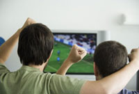 Two males watching sports on television�Cfists raised in air