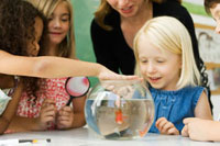 Elementary teacher & students gathered around goldfish bowl