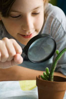 Boy examining cactus through magnifying glass