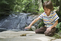 Boy kneeling on rock looking at frog
