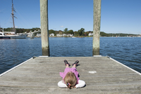 Little girl lying on dock with hands behind head