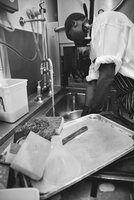 Worker washing dishes in commercial kitchen 11001063989| 写真素材・ストックフォト・画像・イラスト素材|アマナイメージズ