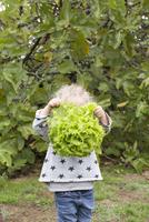 Girl holding head of lettuce