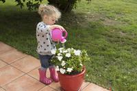 Little girl watering potted plants 11001064163| 写真素材・ストックフォト・画像・イラスト素材|アマナイメージズ
