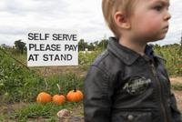 Little boy in pumpkin patch 11001064279| 写真素材・ストックフォト・画像・イラスト素材|アマナイメージズ