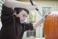 Boy carving a pumpkin 11001064283| 写真素材・ストックフォト・画像・イラスト素材|アマナイメージズ