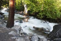 Stream flowing over rocks, Yosemite National Park, California, USA
