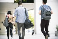 College students walking on campus, rear view 11001065691| 写真素材・ストックフォト・画像・イラスト素材|アマナイメージズ