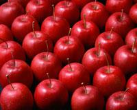 リンゴ 11002027274| 写真素材・ストックフォト・画像・イラスト素材|アマナイメージズ