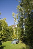 林の中の車