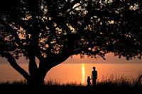 朝日を眺める親子のシルエット