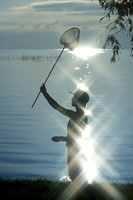 捕虫網を持つ女性のシルエット 11002029481| 写真素材・ストックフォト・画像・イラスト素材|アマナイメージズ