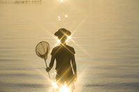 捕虫網を持つ女性のシルエット 11002029484| 写真素材・ストックフォト・画像・イラスト素材|アマナイメージズ