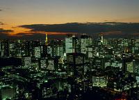 東京タワーと築地市場の夜景