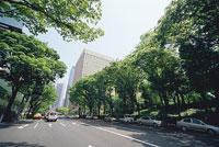 西新宿 11002048916| 写真素材・ストックフォト・画像・イラスト素材|アマナイメージズ