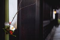 門飾り 椿 11002049945| 写真素材・ストックフォト・画像・イラスト素材|アマナイメージズ