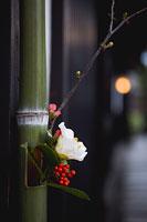 門飾り 椿 11002049946| 写真素材・ストックフォト・画像・イラスト素材|アマナイメージズ