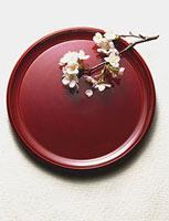 桜の小枝とお盆 11002052646| 写真素材・ストックフォト・画像・イラスト素材|アマナイメージズ