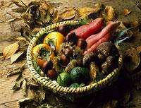 秋の味覚 11002052689| 写真素材・ストックフォト・画像・イラスト素材|アマナイメージズ