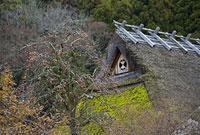 京都府南丹市美山町のかやぶきの里 11002053270| 写真素材・ストックフォト・画像・イラスト素材|アマナイメージズ