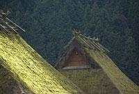 京都府南丹市美山町のかやぶきの里 11002053271| 写真素材・ストックフォト・画像・イラスト素材|アマナイメージズ