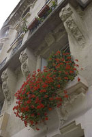 パリのアパルトマンの窓