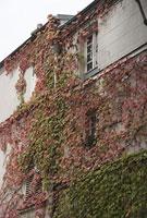 モンマルトル美術館 11002053358| 写真素材・ストックフォト・画像・イラスト素材|アマナイメージズ