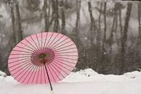 雪原と傘 11002053586| 写真素材・ストックフォト・画像・イラスト素材|アマナイメージズ