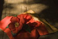 袱紗とツバキ 11002053616| 写真素材・ストックフォト・画像・イラスト素材|アマナイメージズ