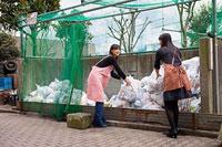 ゴミ捨て場で挨拶を交わす二人の女性 11002053819| 写真素材・ストックフォト・画像・イラスト素材|アマナイメージズ