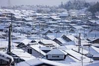 雪景色の住宅街 11002054406| 写真素材・ストックフォト・画像・イラスト素材|アマナイメージズ