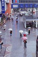 雨の新宿駅西口