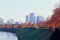 皇居内堀の紅葉 11002054508| 写真素材・ストックフォト・画像・イラスト素材|アマナイメージズ