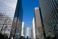 西新宿2丁目付近 11002054529| 写真素材・ストックフォト・画像・イラスト素材|アマナイメージズ