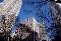 西新宿2丁目付近 11002054530| 写真素材・ストックフォト・画像・イラスト素材|アマナイメージズ