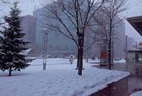 雪景色の札幌駅北口付近