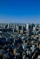東京タワーとビル群 富士山