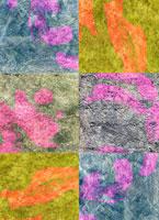 焼箔 11002056149| 写真素材・ストックフォト・画像・イラスト素材|アマナイメージズ