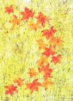 光葉 11002056185| 写真素材・ストックフォト・画像・イラスト素材|アマナイメージズ
