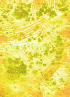 麻ぼかし 11002056194| 写真素材・ストックフォト・画像・イラスト素材|アマナイメージズ
