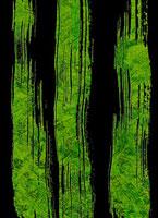 苔さばき 11002056201| 写真素材・ストックフォト・画像・イラスト素材|アマナイメージズ