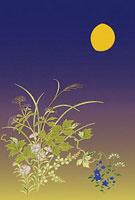 秋の七草 11002056246| 写真素材・ストックフォト・画像・イラスト素材|アマナイメージズ