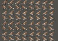 スズメ 11002056425| 写真素材・ストックフォト・画像・イラスト素材|アマナイメージズ