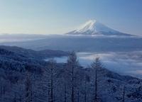 西川新倉林道からの雪景色と富士山