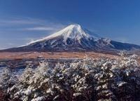 高座山からの雪景色と富士山